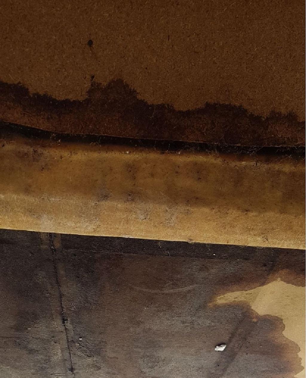 daklekkage rotterdam