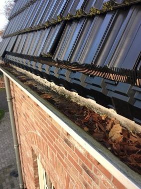 vogelnestjes onder uw dakpannen